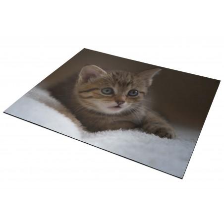 Tapis de souris  25x18cm - Chaton 1