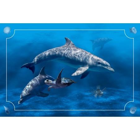 Tapis multijeux Dolphin world